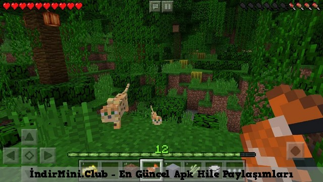minecraft pocket edition son sürüm apk