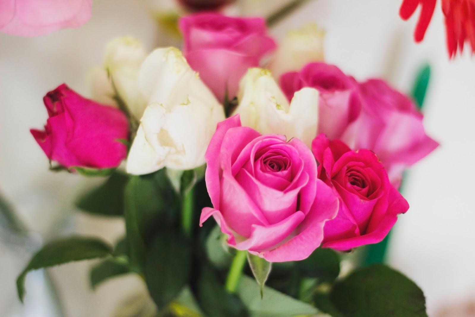 Roses, Beauty bloggers, Gratitude, Flowers, Bloom, Katie Writes, Katie Writes Blog, Derbyshire Blogs, Photography, Pretty,