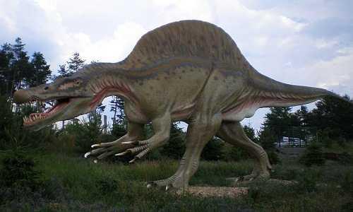 الأسبينوصور