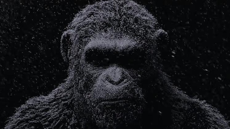 """""""Planeta dos Macacos: A Guerra"""" chega aos cinemas em julho de 2017."""