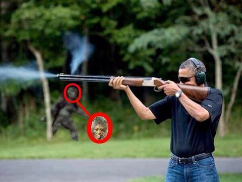 http://2.bp.blogspot.com/-bwIg-w2tGa8/UQ6bgMAwq0I/AAAAAAAAEQs/_Vh51cR5vX8/s1600/Obama+Sasquatch.jpg