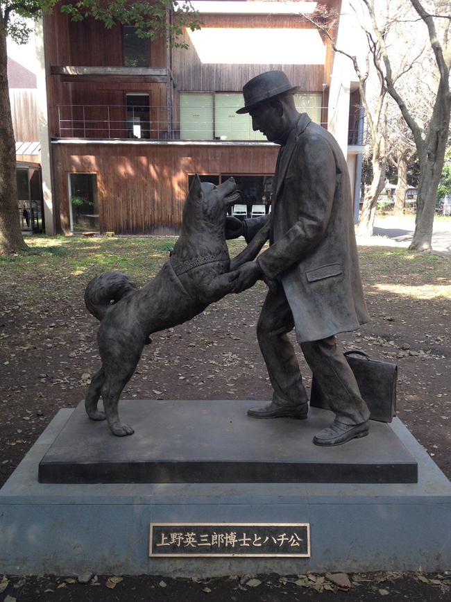 Hachikō The Faithful Dog - a National Symbol   Australian ...