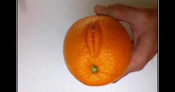 breakfast lunch dinner sex meme in Orange