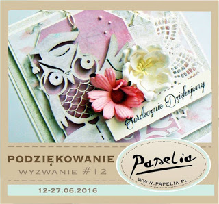 http://papeliapl.blogspot.com/2016/06/wyzwanie-12-podziekowanie.html