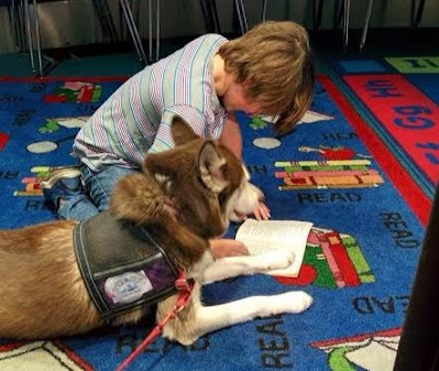 Therapy dog program, Animal therapy programs, Pet therapy program , Animal therapy, Therapy Dogs, #therapydogs