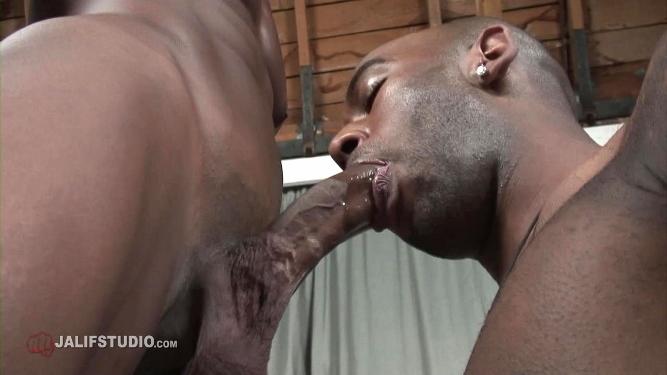 Black Gay Porn Zone-9888