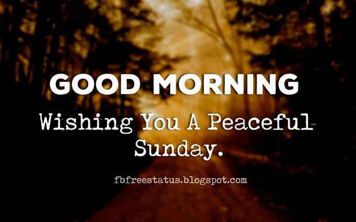Good Morning Sunday Quotes Wishing You A Relaxing Sunday