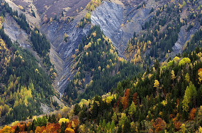 Autumn along the alpine road