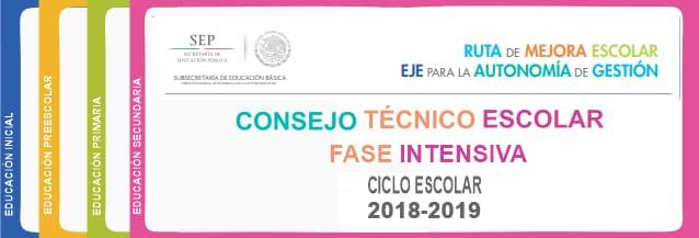 Consejo Técnico Escolar Fase Intensiva 2018-2019