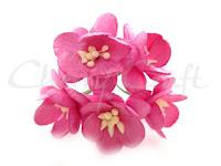 https://cherrycraft.pl/pl/p/Kwiat-wisni-GLEBOKI-ROZ-5-szt.-Wild-Orchid-Crafts-/2635