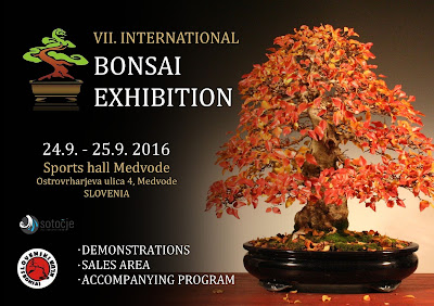Save the date - VII. International Bonsai Exhibition