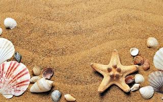 Spiaggia d'estate