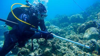 Search for the Sunken Ternate Fleet of 1650