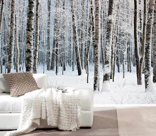 tapet björk björkstammar fototapet träd vinter snö