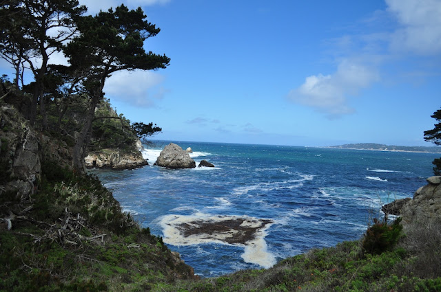trek point lobos california travel blog