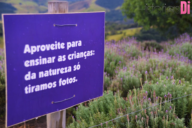 Amei esse cartaz conscientizar no Lavandário de Cunha