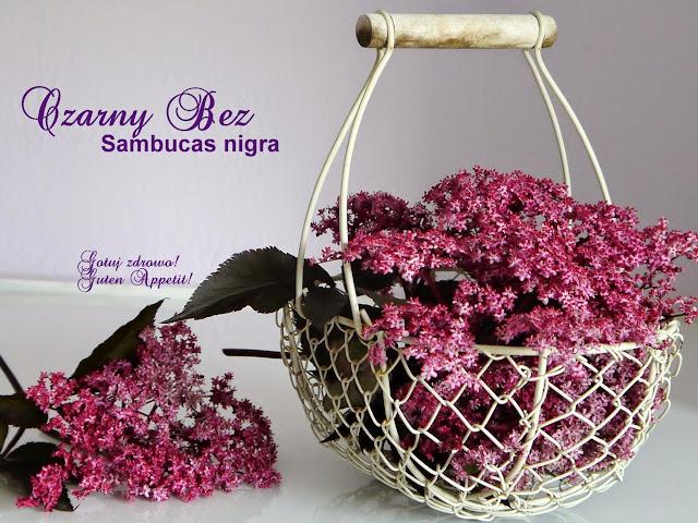 Czarny bez - właściwości zdrowotne i suszenie kwiatów - Czytaj więcej »