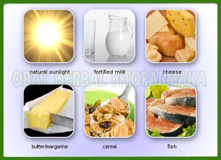 makanan sehat, keju, susu, sinar matahari