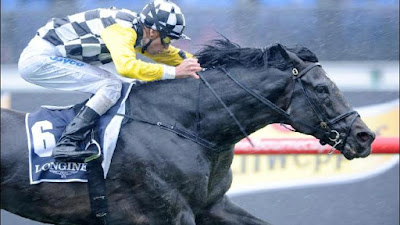 2yo horse racing