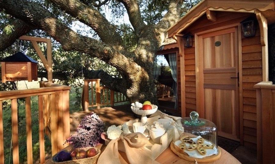 DIY%2BLuxury%2BTree%2BHouses%2B%25289%2529 10 DIY Luxury Tree Houses Interior