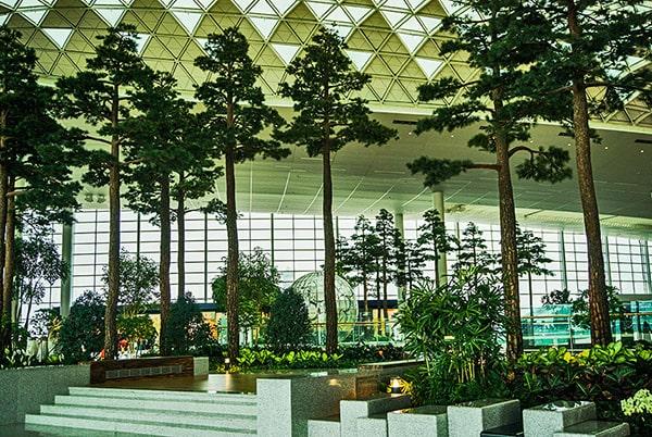 Самые красивые аэропорты мира 7