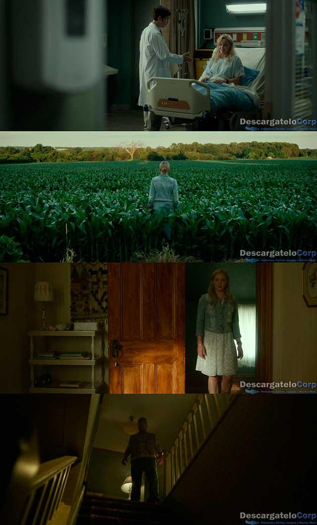 Lavender (2016) HD 720p Español Latino