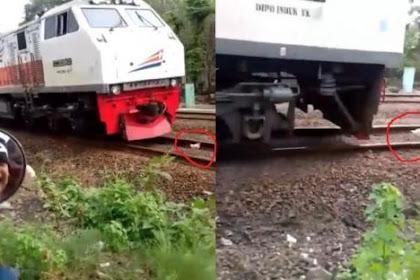 Video Ayam Lari Terbirit-Birit di Kejar Kereta Viral di Media Sosial