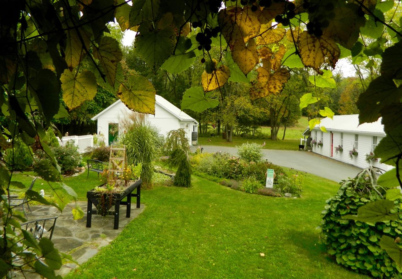 Cottage Gardens: Pam's English Cottage Garden: Autumn In The Cottage Garden