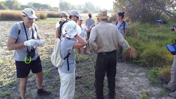 Vountarios medioambientales en la Rocina eliminando plagas invasivas