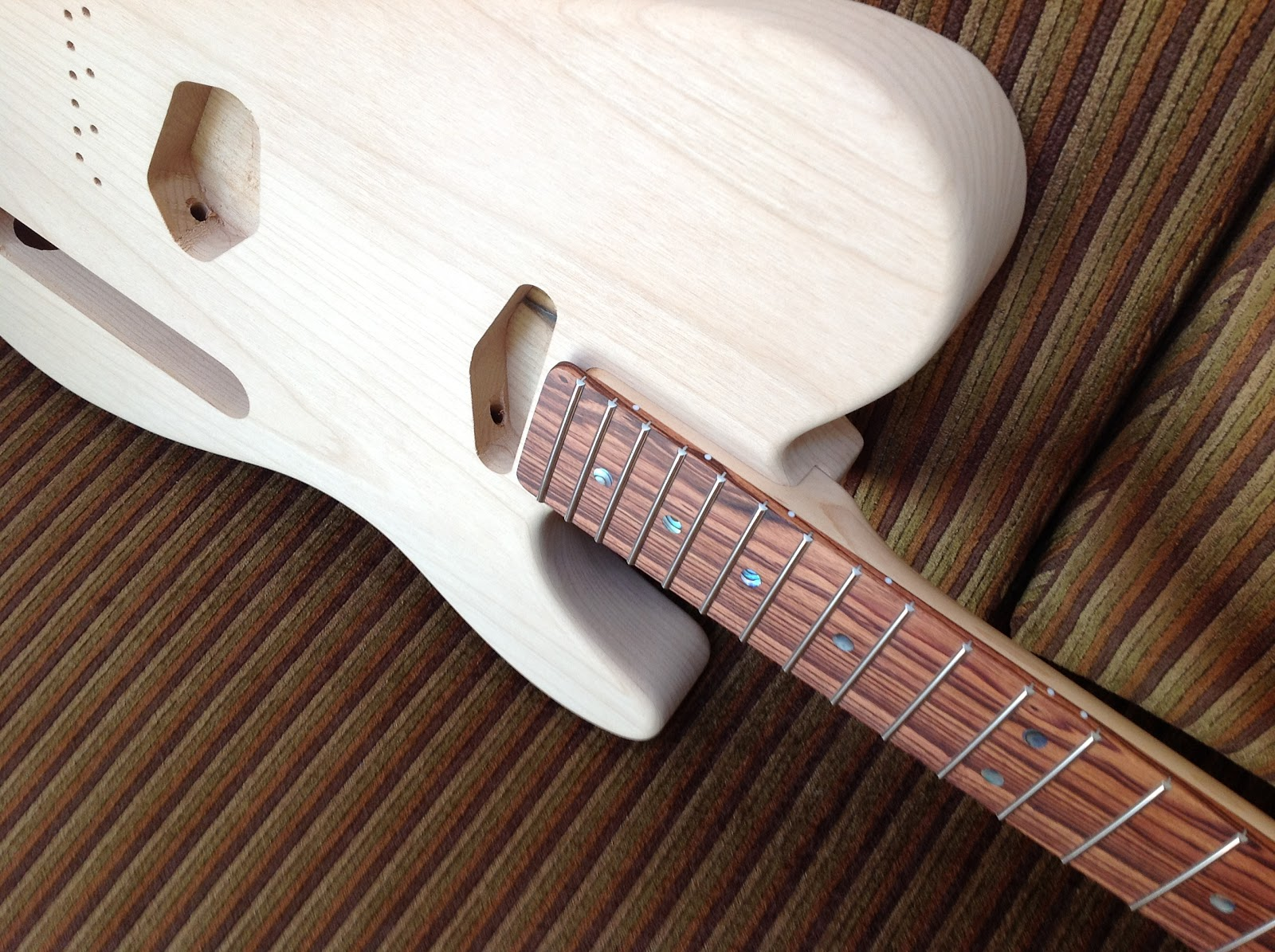 Ego's Warmoth Partscaster Project