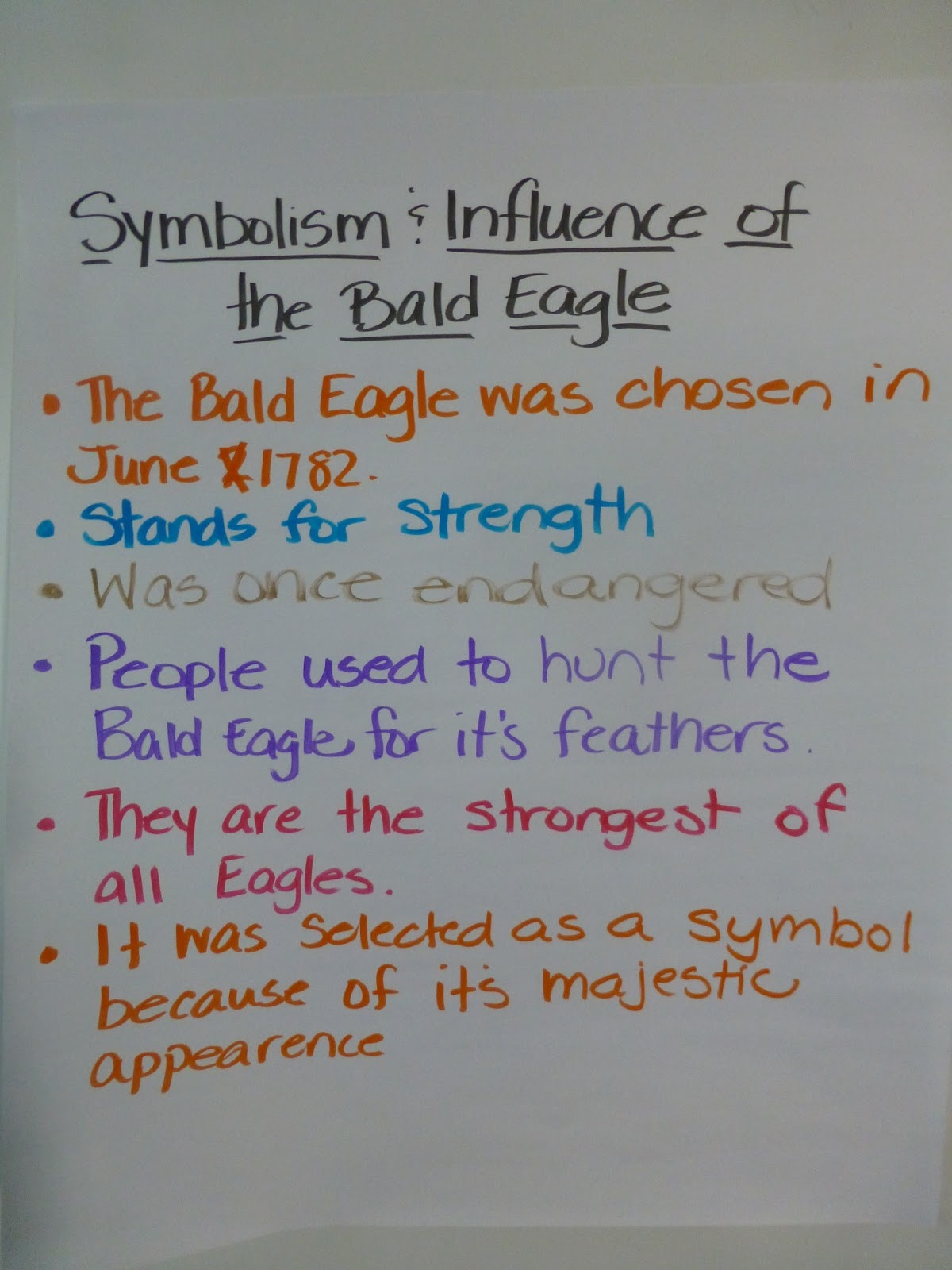 Mrs Trevino S 2nd Grade Class Bald Eagle Research Groups