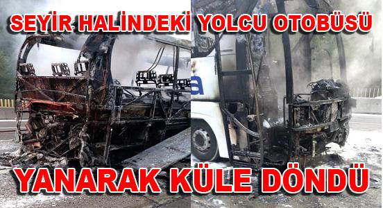 Anamur Haber, MERSİN,