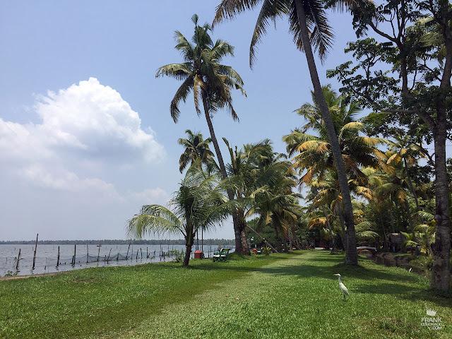 paisaje de kerala india