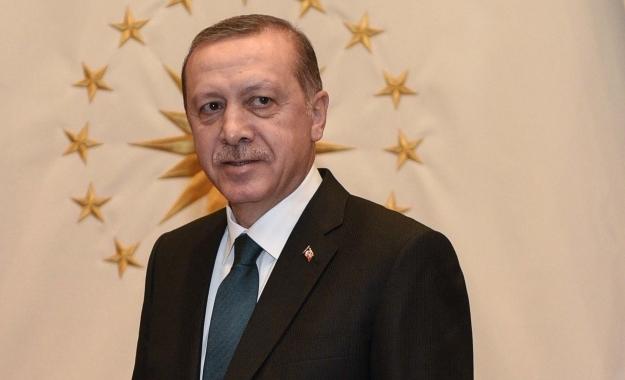 Ερντογάν και Γκρίζοι Λύκοι «ρυθμίζουν» το πολίτευμα στην Τουρκία