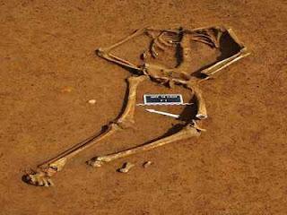 Esqueleto de soldado britânico é achado quase dois séculos após batalha de Waterloo, na região da atual Bélgica - créditos de image Folha Uol