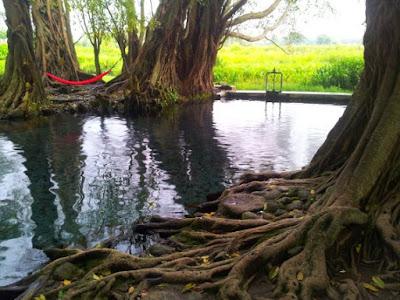 Jernihnya Sumber Air wisata Umbul Manten