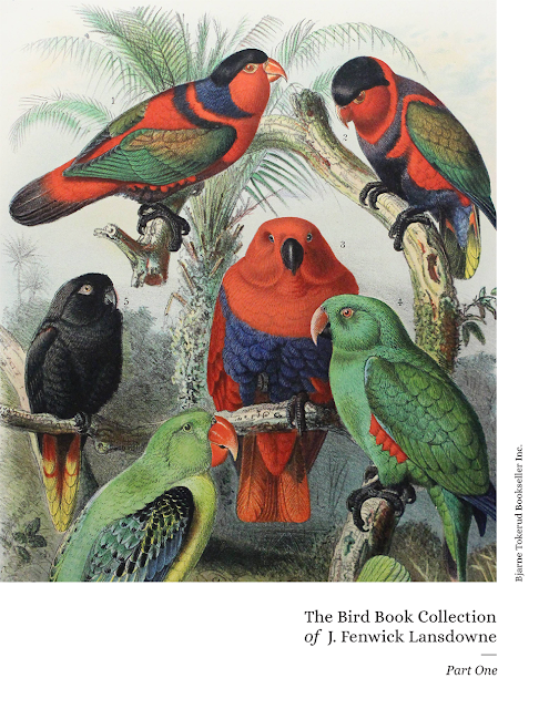 Click the birds to get the PDF of the catalogue.