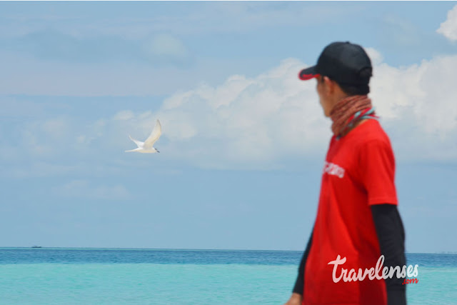 Birding Aceh