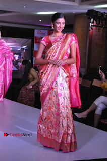 South Indian Celebrities Pos at Love For Handloom Collection Fashion Show  0076.jpg