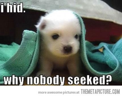 nobody seeked