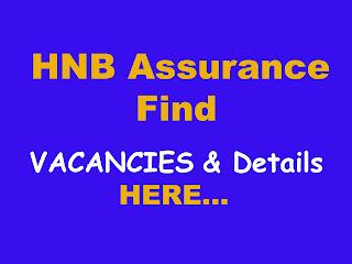 HNB Assurance Vacancies Image