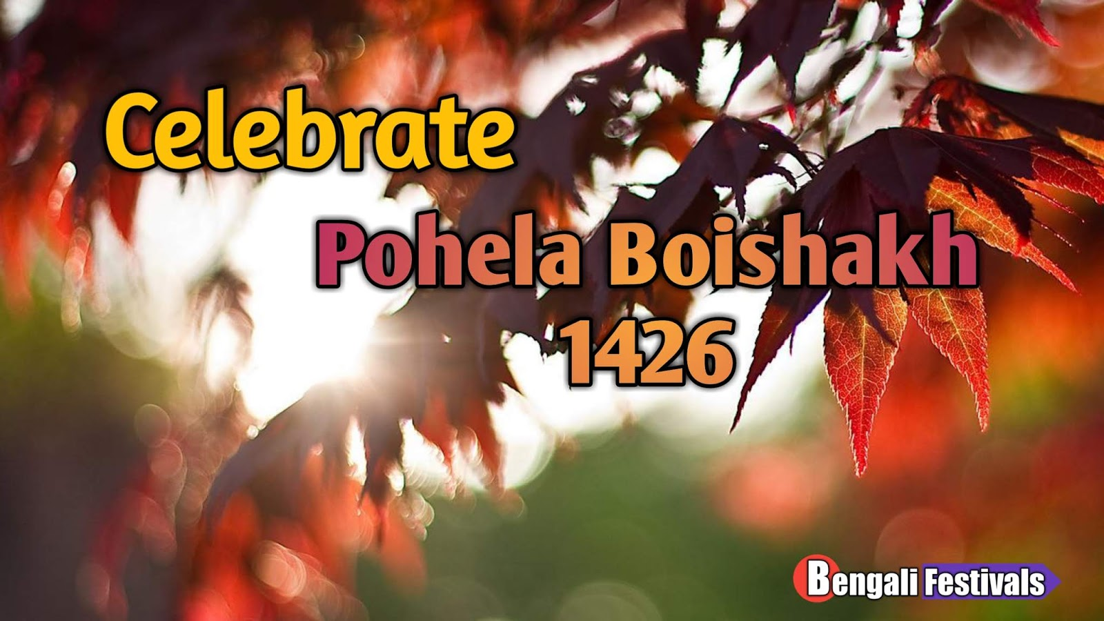 Pohela Boishakh Pictures