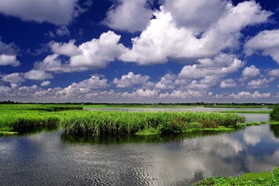 nature wallpapers of bangladesh: Nature: Beauty Of Nature: Bangladesh