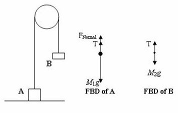 AP Physics Resources: Free Body Diagrams for AP Physics B