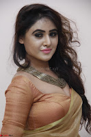 Sony Charistha in Lovely Brown Saree and Choli Spicy Pics ~  Exclusive 09.JPG