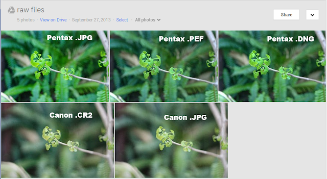 The selection of RAW photos as loaded into google+