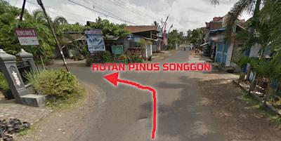Arah ke lokasi Hutan Pinus Songgon.