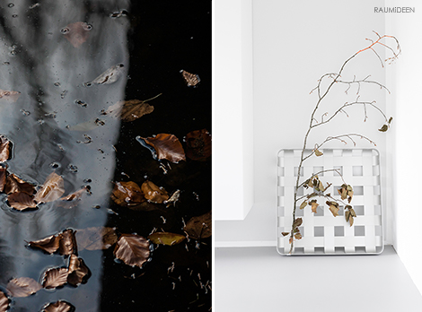Herbsttage - Herbstfarben - Herbstdeko - Farbe für Herbstzweige