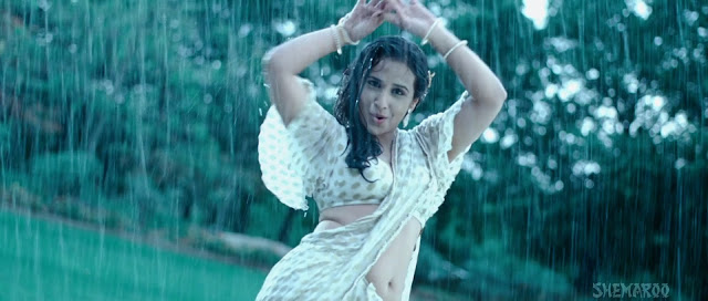 Vidya Balan Hot Photos From Dirty Picture In Hd