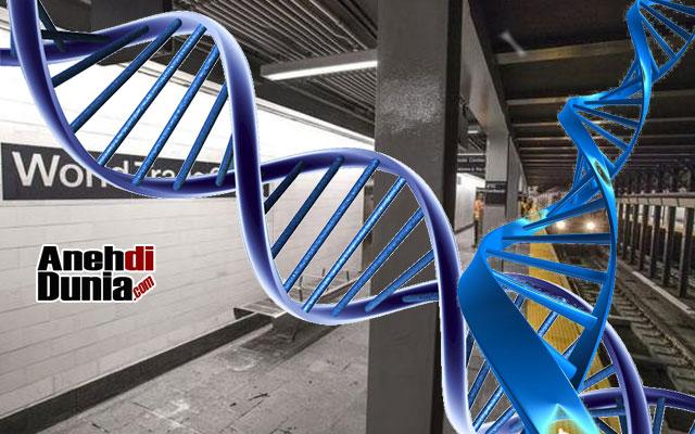 Misteri DNA Yang Ditemukan Di Stasiun Bawah Tanah New York